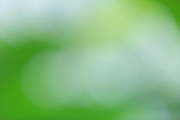 Zielony bokeh na rozmycie natury. element projektu.