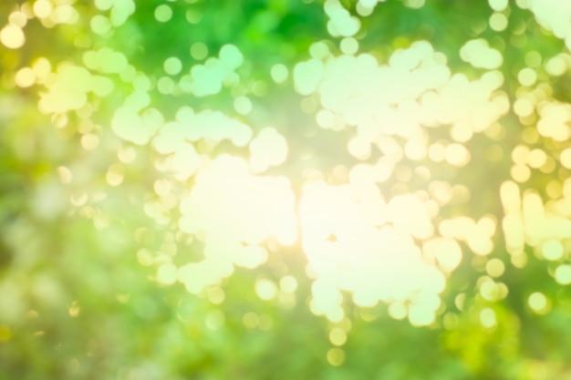 Zielony bokeh tło