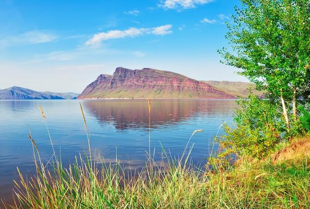 Zielony brzeg pod błękitnym niebem czerwone skały w oddali terytorium krasnojarska syberia rosja