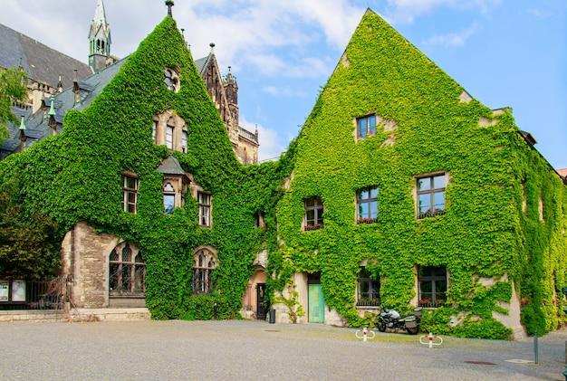 Zielony budynek pokryty roślinami w niemczech