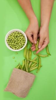 Zielony groszek, strąki i groszek w płóciennej torbie na odosobnionym zielonym tle, kobieta obiera