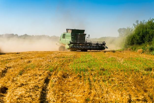 Zielony kombajn do zbioru upraw polowych