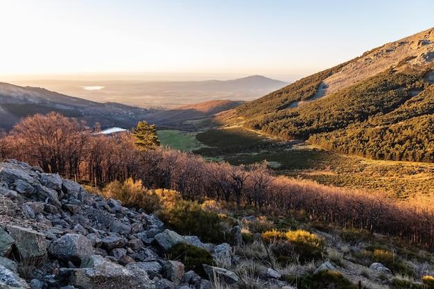 Zielony krajobraz o wschodzie słońca nad doliną, z drzewami, skałami i odległym widokiem na góry na horyzoncie. la morcuera, navacerrada, madryt. europa.