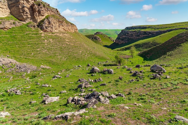 Zielony krajobraz przyrody z fragmentem zawalenia się skały