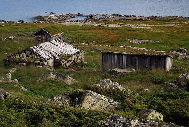 Zielony krajobraz z drewnianymi stodołami w pobliżu jeziora w norwegii