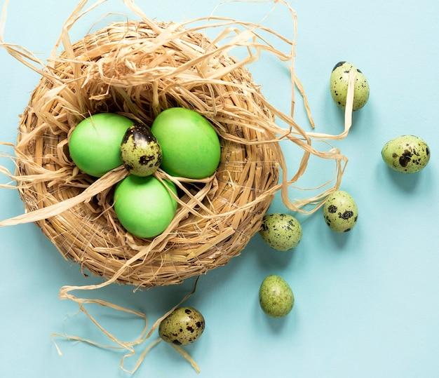 Zielony kurczak wielkanocny i jaja przepiórcze