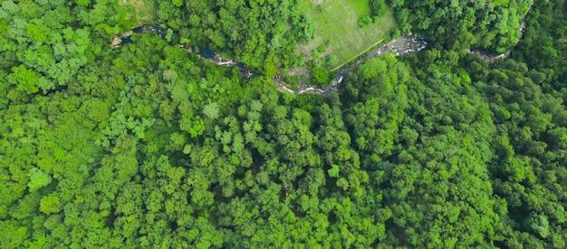 Zielony las i bieżąca rzeka, widok z lotu ptaka. tekstura zielony las