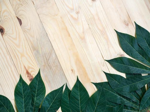 Zielony liść manioku na tle drewna, miejsce