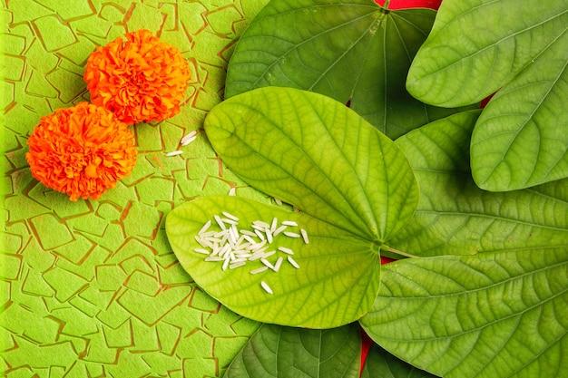 Zielony liść, ryż