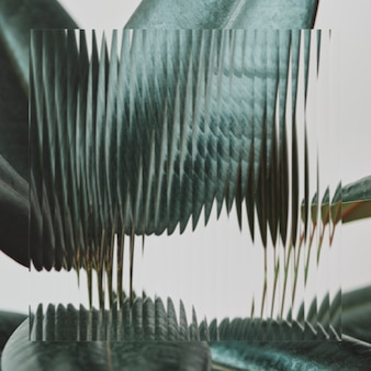 Zielony liść tło z wzorzystą teksturą szkła