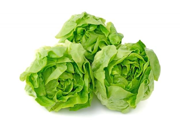 Zielony masło sałaty warzywo lub masło głowa odizolowywająca na biel ścianie