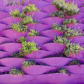 Zielony na kreatywnej fioletowej ścianie. koncepcja miłośnika roślin