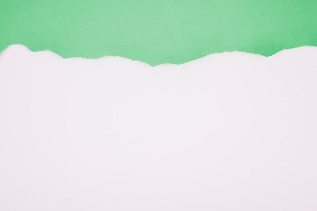 Zielony obdarty papier na bielu