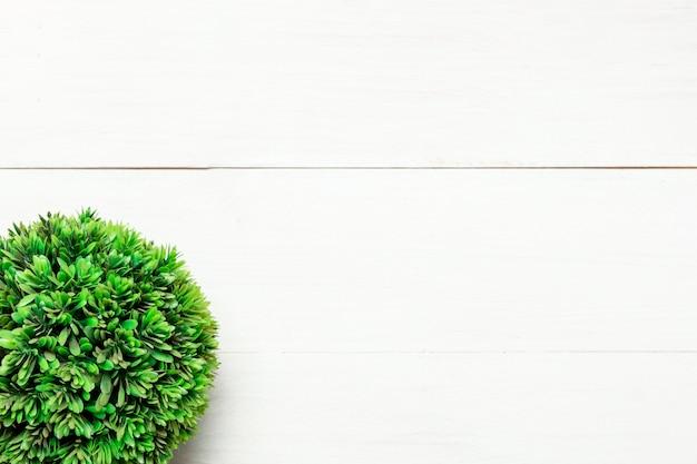 Zielony okrągły krzak na białym tle