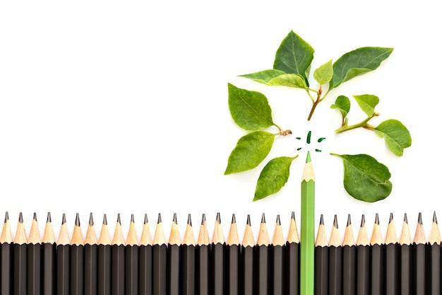Zielony ołówek ze świeżymi zielonymi liśćmi na dużej grupie czarnych ołówków