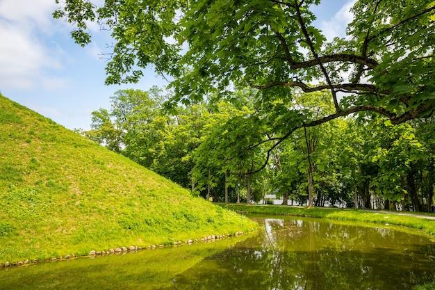Zielony park miejski z drzewami, kwiatami, chodnikami.