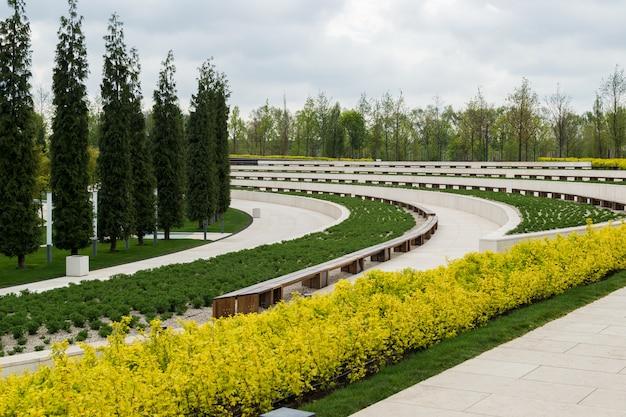 Zielony park wiosny z wysokimi drzewami i kwitnącymi żółtymi krzewami