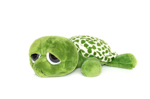Zielony pluszowy żółw na białym tle