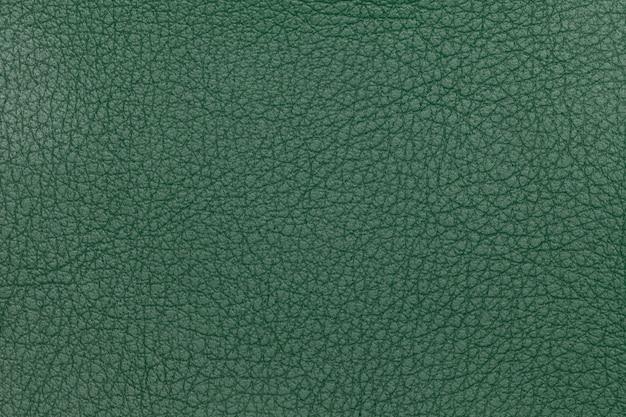 Zielony rzemienny tekstury tło