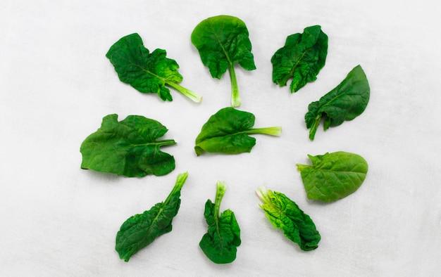 Zielony szpinak opuszcza na odosobnionym białym tle