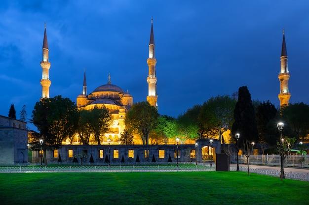 Zielony trawnik i meczet błękitny meczet w nocy