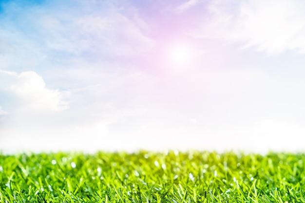 Zielony trawnik z niebieskim niebem. wiosna krajobraz w słonecznym dniu.