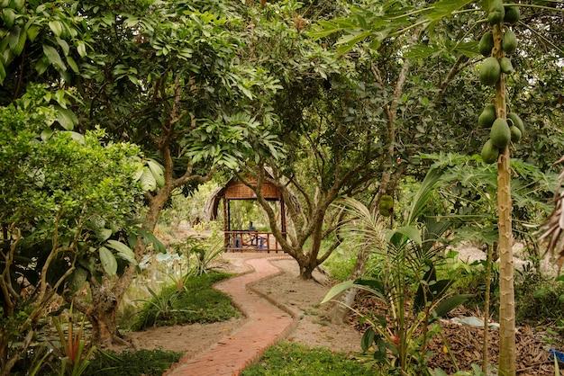 Zielony tropikalny ogród ze strefą wypoczynkową w południowo-wschodniej azji. miejsce na relaks i odpoczynek