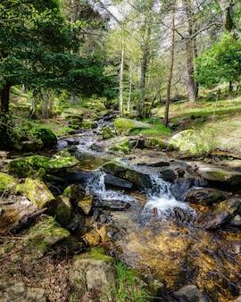 Zielony wiosenny krajobraz ze strumieniem wody spadającym między skałami w idyllicznym otoczeniu