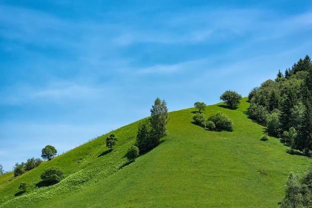 Zielony wzgórze na niebieskim niebie. ekoturystyka rekreacja, wieś