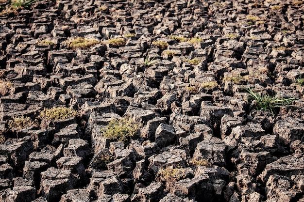 Ziemia pęknięty z teksturą.