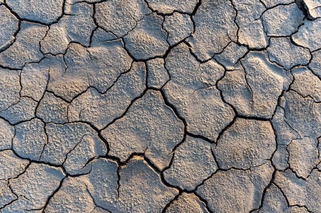 Ziemia suszy bez tekstury wody. globalny niedobór wody na planecie. globalne ocieplenie i koncepcja efektu cieplarnianego. susza, żniwa pszenicy umierają.