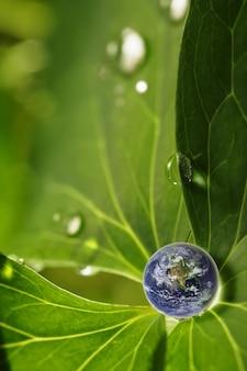 Ziemia w wodzie opuszcza odbicie na zielonym liściu, elementy ten wizerunek meblujący nasa