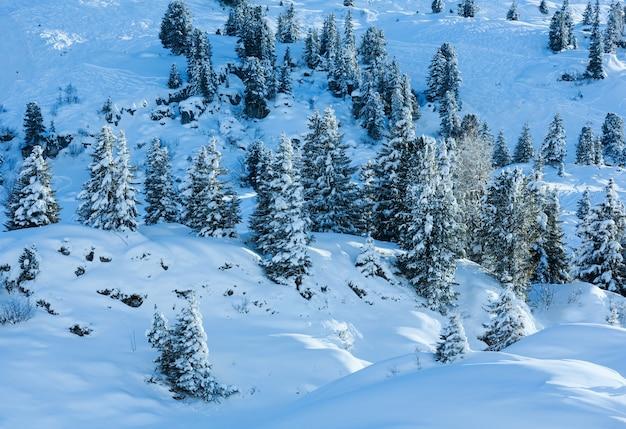 Zima góra z ośnieżonymi jodłami na stoku.