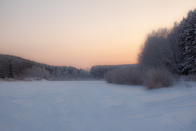 Zima i mroźna przyroda. zamarznięte jezioro w pobliżu lasu, całe pokryte śniegiem.
