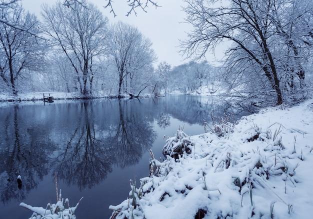 Zima krajobraz z rzeką w lesie
