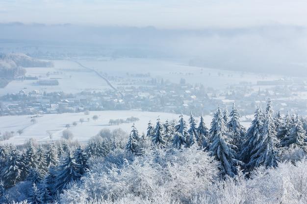 Zima piękny krajobraz z drzewami porośniętymi szronem. mała europejska wioska znajduje się wśród ośnieżonych pól.