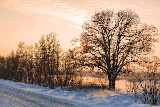 Zima słabo oczyszczona droga. droga na wsi usiana śniegiem. zimowy pejzaż z zaspy śnieżne