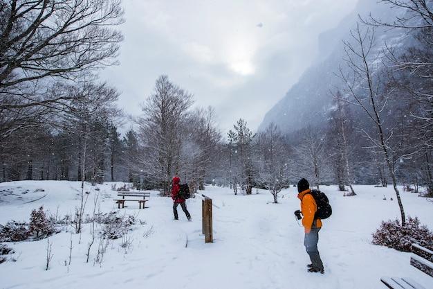 Zima w parku narodowym, pireneje, hiszpania