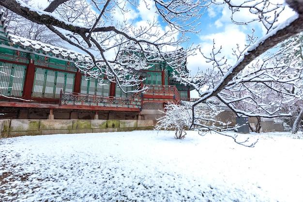 Zima w tajemniczym ogrodzie pałacu changdeokgung w seulu w korei południowej