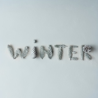 """""""zima"""" wykonana z gałęzi drzew i szyszek na śnieżnej ścianie. koncepcja sezonu. leżał na płasko."""