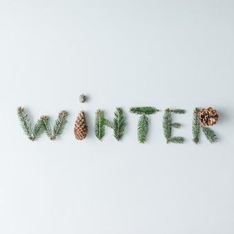 """""""zima"""" z gałęzi i szyszek na białej ścianie. koncepcja sezonu. leżał na płasko."""