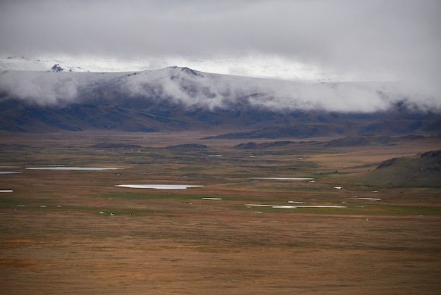 Zimna pochmurna pogoda na stepie. płaskowyż ukok ałtaju. bajeczne zimne krajobrazy.