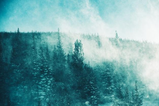 Zimowa burza