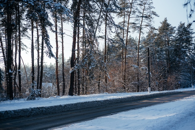Zimowa droga przez zaśnieżony las, mroźna zima tło