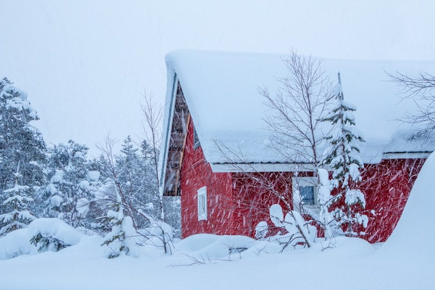 Zimowa finlandia. gęsty las i dużo śniegu. dom drewniany z czerwonymi ścianami. opad śniegu