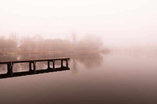 Zimowa i mglista scena jeziora