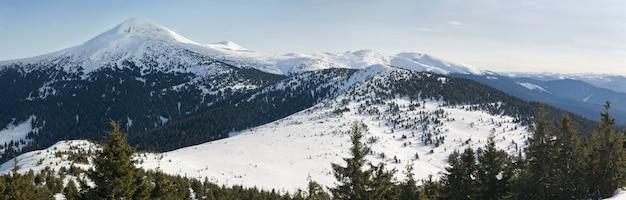 Zimowa panorama górska na goverla mountain, ukraina, karpaty