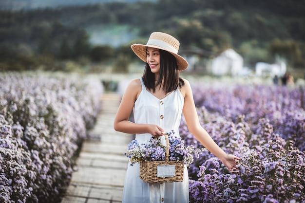 Zimowa podróż relaksująca koncepcja wakacji, młoda szczęśliwa podróżniczka azjatycka kobieta z sukienką zwiedzanie na polu kwiatów margaret aster w ogrodzie w chiang mai, tajlandia