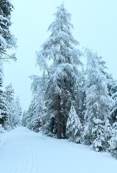 Zimowa przełęcz górska z zaśnieżoną drogą i ośnieżonymi drzewami (austria, tyrol)