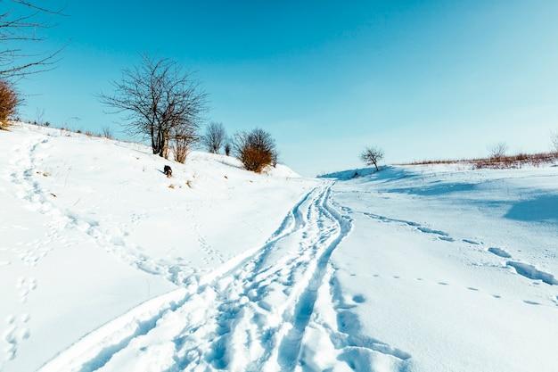 Zimowa sceneria krajobrazowa ze zmodyfikowaną trasą narciarstwa biegowego